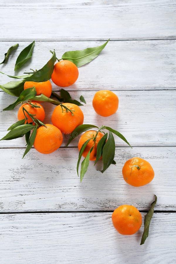 Tangarines e foglie maturi freschi immagine stock libera da diritti