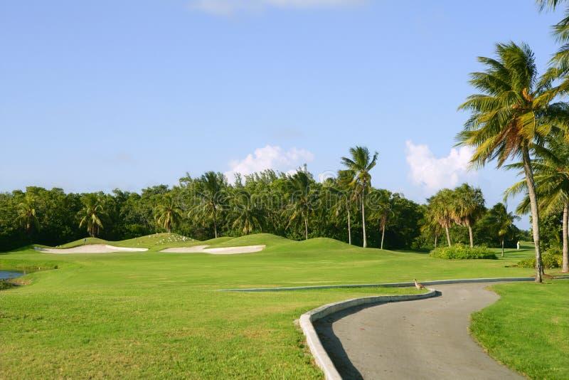 tangent tropiska miami för biscaynefältgolf fotografering för bildbyråer