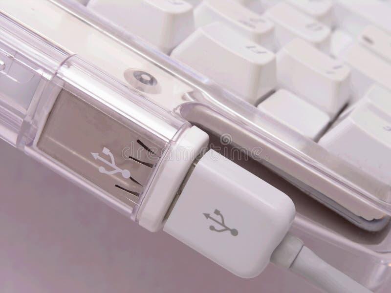 tangentbordusb för 2 anslutning arkivbild