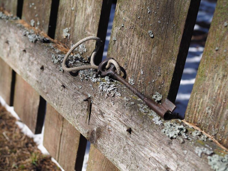 Tangenten i skogen på det gamla staketet är en universell kombination av funktionsduglighet och elegans fotografering för bildbyråer