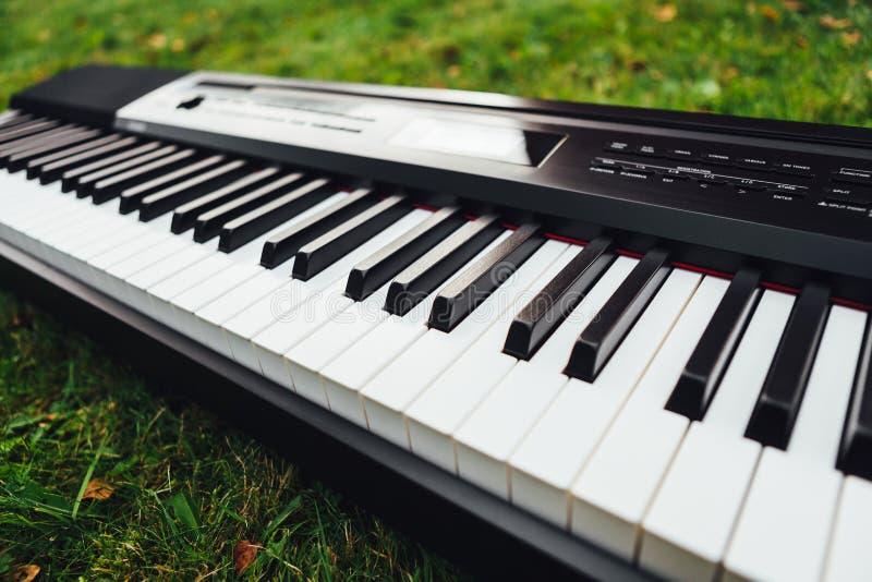 Tangenter av det elektriska pianot, bakgrund för grönt gräs royaltyfri bild