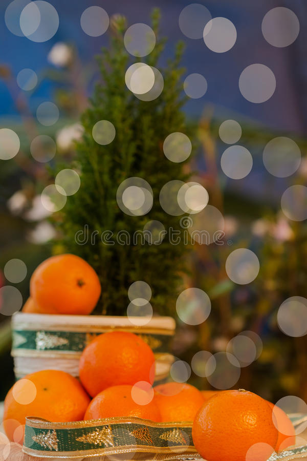 Tangerin i juldekor med sörjer trädet Sol- fruktenergi av solen, symbollyckan, rikedomen och framgången royaltyfri bild