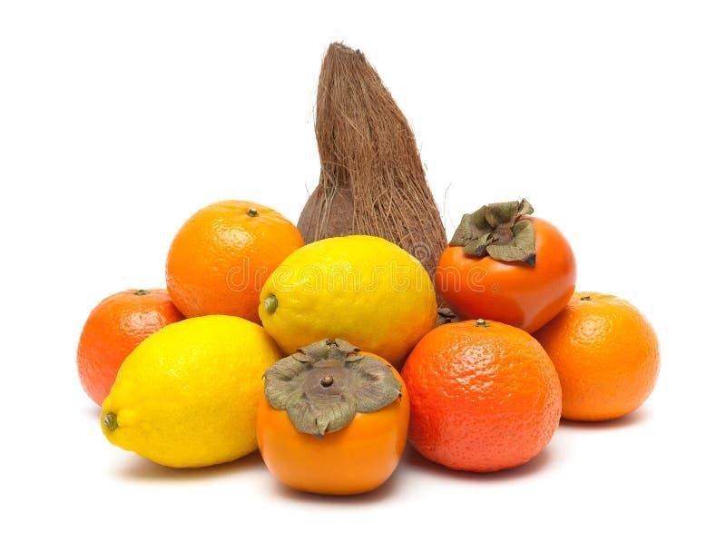 Tangerin, kokosnöt, persimon och citron som tillbaka isoleras på en vit arkivfoto
