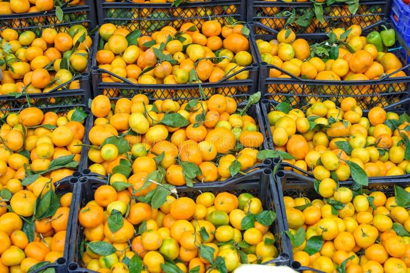 Tangerin på marknaden arkivfoto