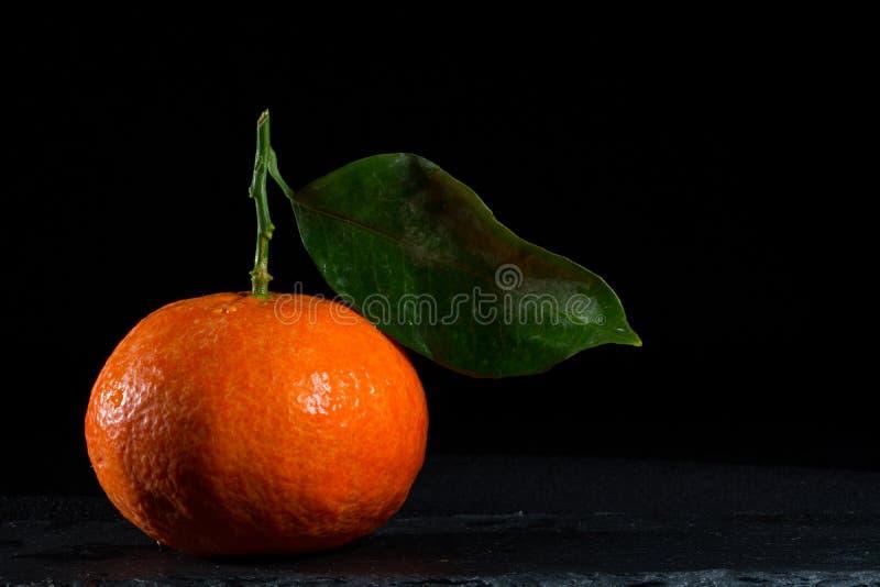 Tangerina imagens de stock