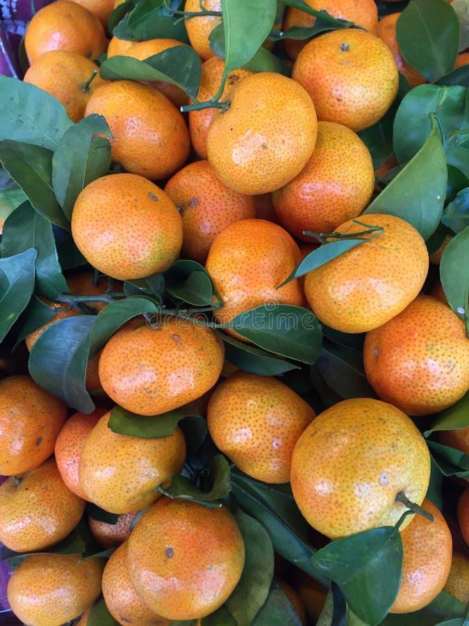A tangerina, tangerina do citrino imagens de stock