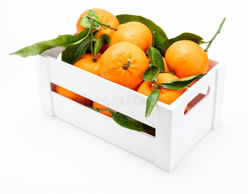 Tangerinas frescas e cruas com as folhas verdes na caixa de madeira imagem de stock