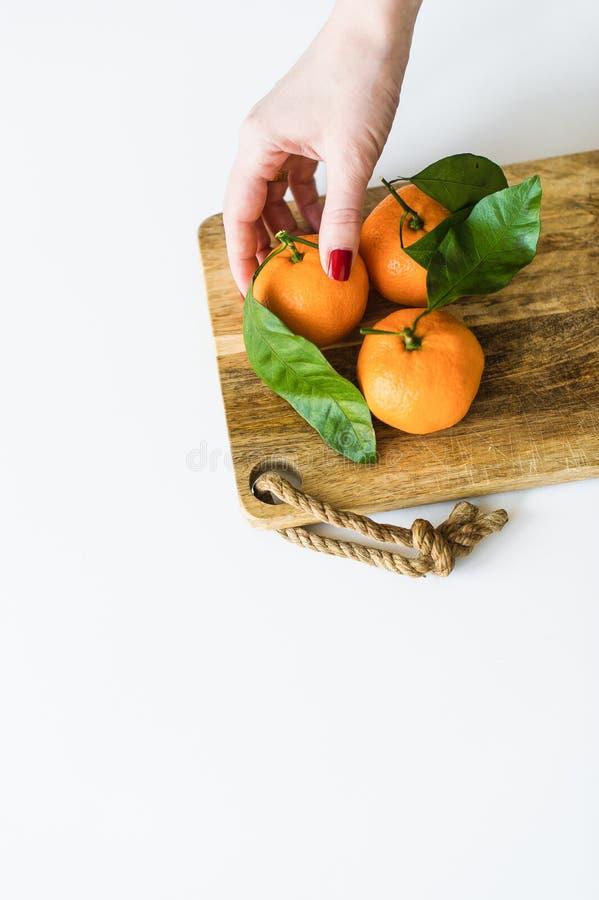 Tangerine εκμετάλλευσης χεριών με έναν κλάδο στο άσπρο υπόβαθρο στοκ εικόνες με δικαίωμα ελεύθερης χρήσης