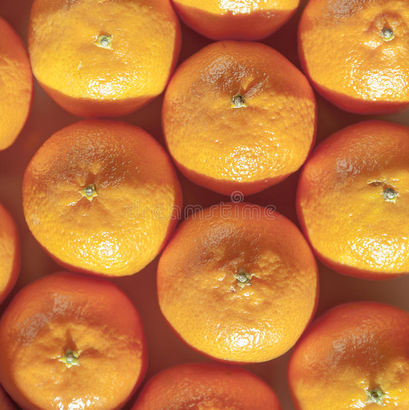 Tangerine, μανταρίνι, κλημεντίνη ή πορτοκαλί υπόβαθρο φρούτων στοκ εικόνες με δικαίωμα ελεύθερης χρήσης