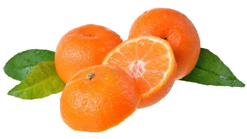 Tangerine περικοπή με το φύλλο που απομονώνεται στοκ εικόνες με δικαίωμα ελεύθερης χρήσης
