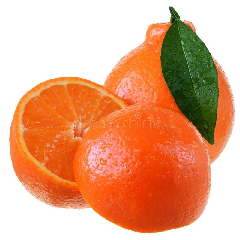 Tangerine περικοπών εσπεριδοειδή με τα φύλλα που απομονώνονται στοκ εικόνα