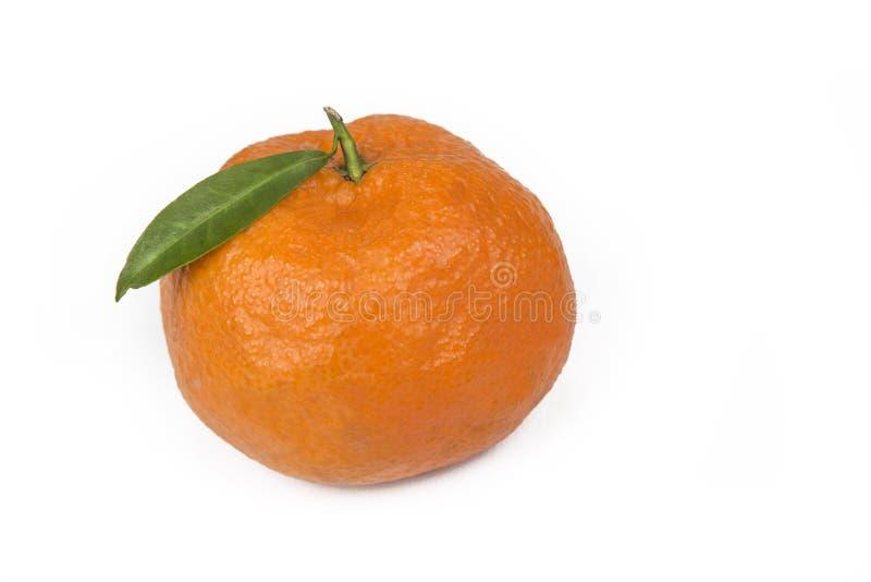 Tangerine или Клементин при зеленые лист изолированные на белой предпосылке стоковое изображение