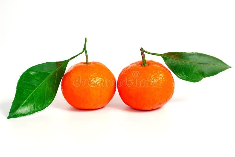 Tangerine или Клементин при зеленые лист изолированные на белой предпосылке стоковые изображения