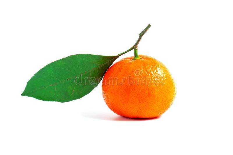 Tangerine или Клементин при зеленые лист изолированные на белой предпосылке стоковые изображения rf