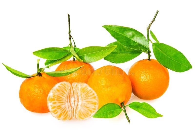 Download Tangerine с этапами стоковое изображение. изображение насчитывающей слащаво - 37928355