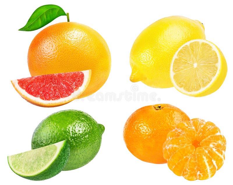Tangerine цитрусовых фруктов установленный, грейпфрут, известка, лимон изолировал o стоковое изображение rf