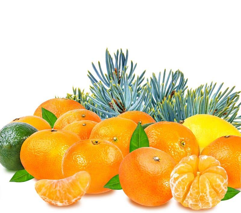 Tangerine цитрусовых фруктов установленный, известка, лимон изолированный на белизне стоковая фотография
