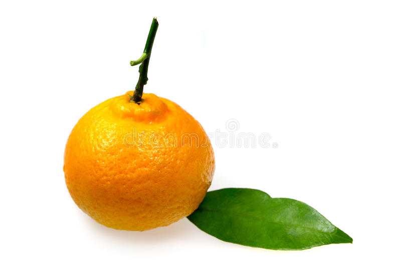 Download Tangerine stock image. Image of fruits, dietetic, diet - 14334899