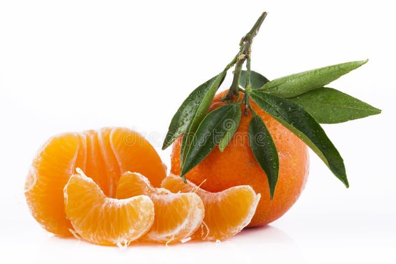 Tangerine стоковое фото