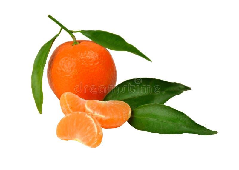 Tangerine royaltyfria foton