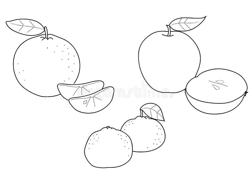 tangerine för äpplebw-orange royaltyfri illustrationer