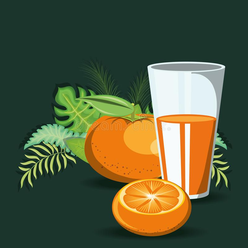 Citric fruits design. Tangerine and glass with juice over tropical leaves and green background, colorful design. vector illustration vector illustration