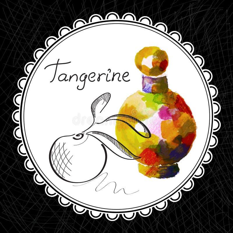 Tangerine royalty free illustration