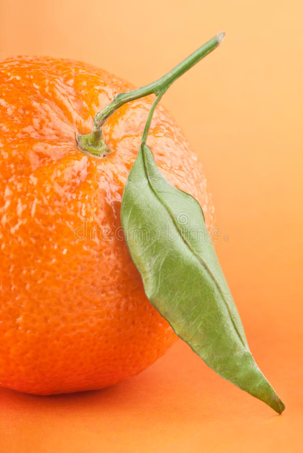 Tangerine with leaf stock image