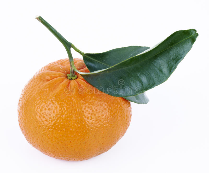 Tangerine with leafs. Fresh tangerine with green leafs isolated on white background royalty free stock images