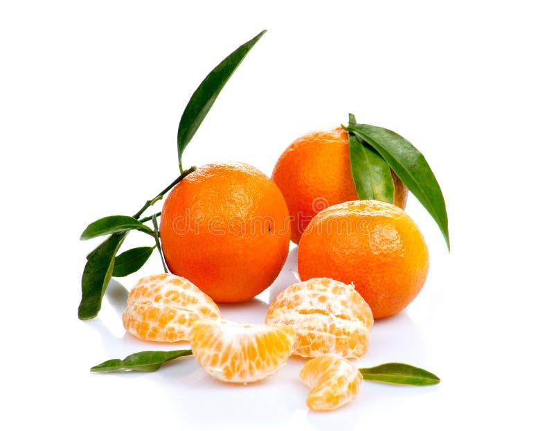 Tangerine lub mandarynki owoc odizolowywająca na białej tło wycinance obrazy stock