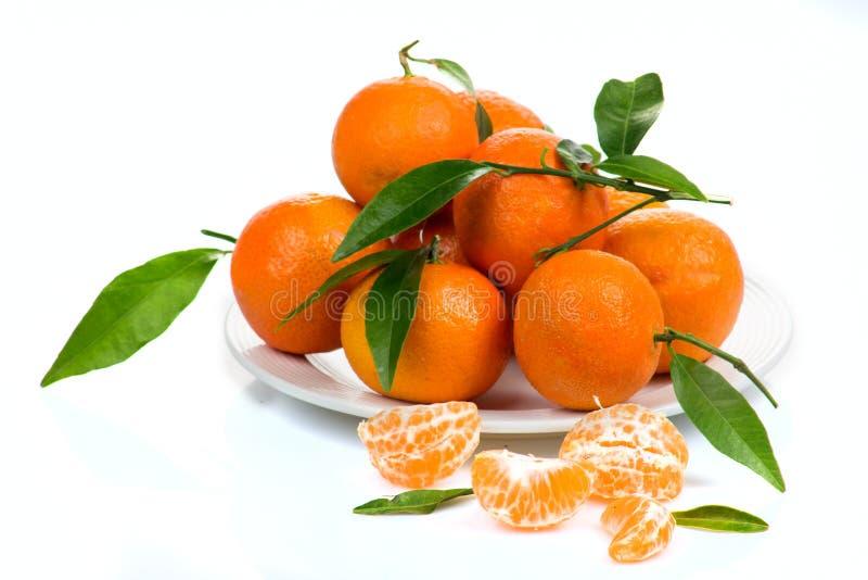 Tangerine lub mandarynki owoc odizolowywająca na białej tło wycinance obrazy royalty free