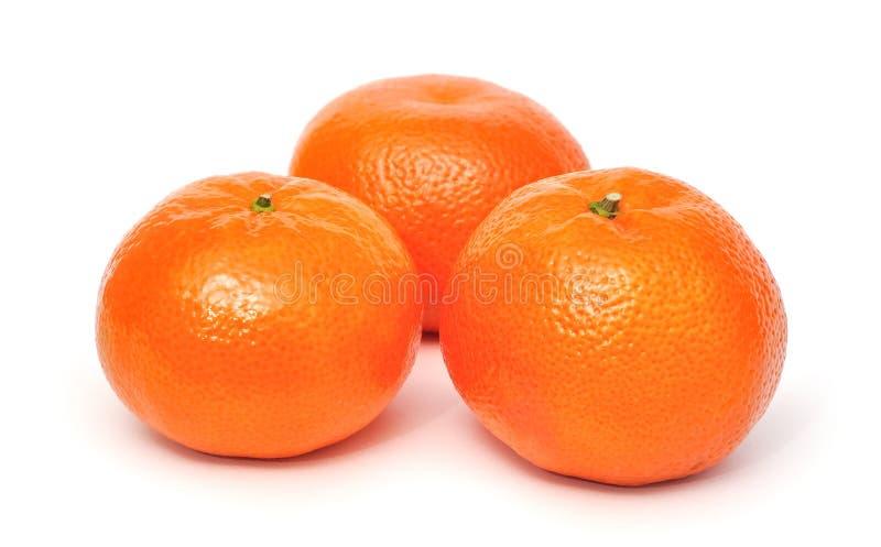 Tangerine stock photo