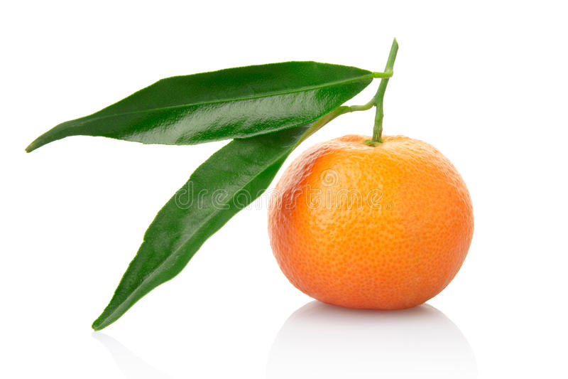 Tangerine mit Blatt stockbilder