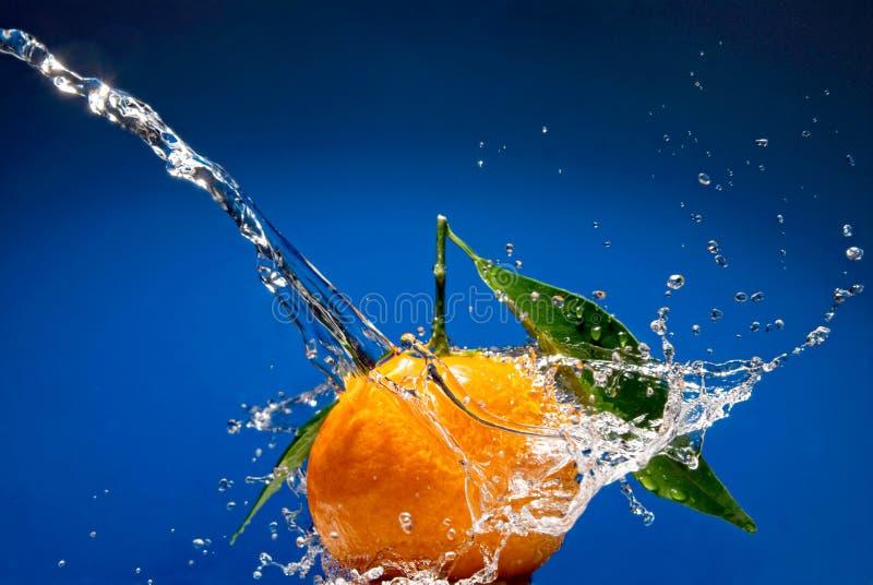 Tangerine mit Grünblättern und Wasserspritzen lizenzfreie stockbilder
