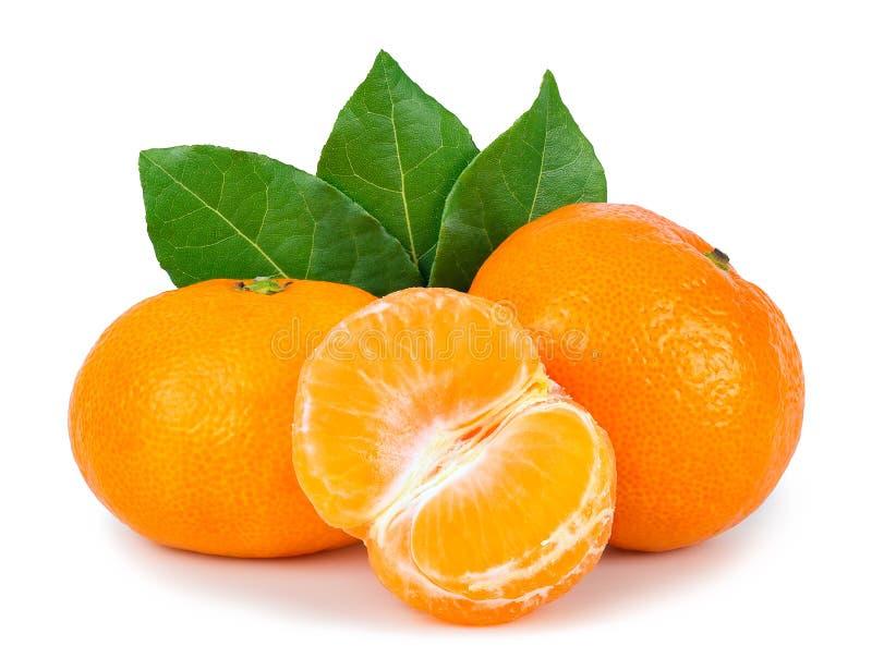 Tangerine orange on white background royalty free stock photos
