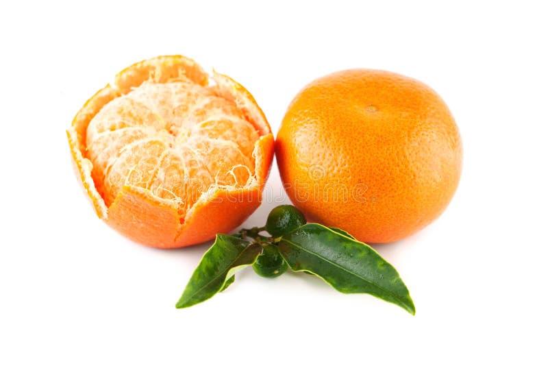 Tangerine owoc z Zielonymi liśćmi zdjęcia royalty free