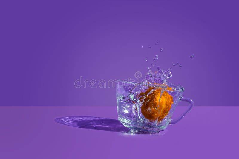 Tangerine pluśnięcie obraz royalty free