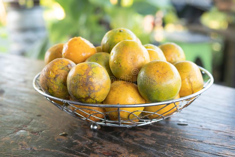 Tangerine in a silver metal basket placed on a wooden table royalty free stock photos