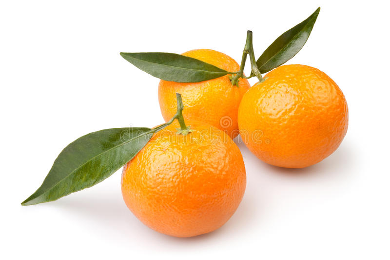 Tangerine three. On white background stock photos