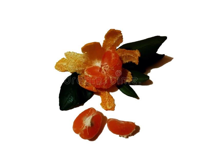 Tangerine z zielonym liściem odizolowywającym na białym tle obraz royalty free