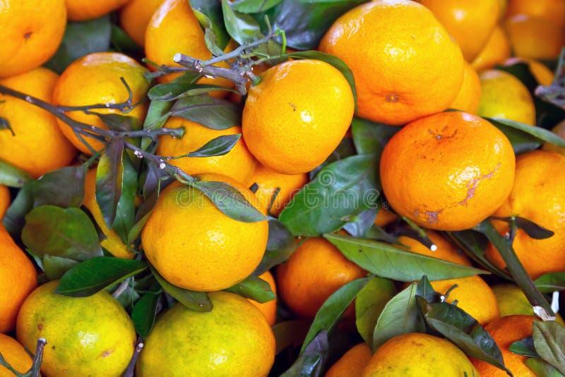 Tangerinefrüchte Schließen Oben Stockbild