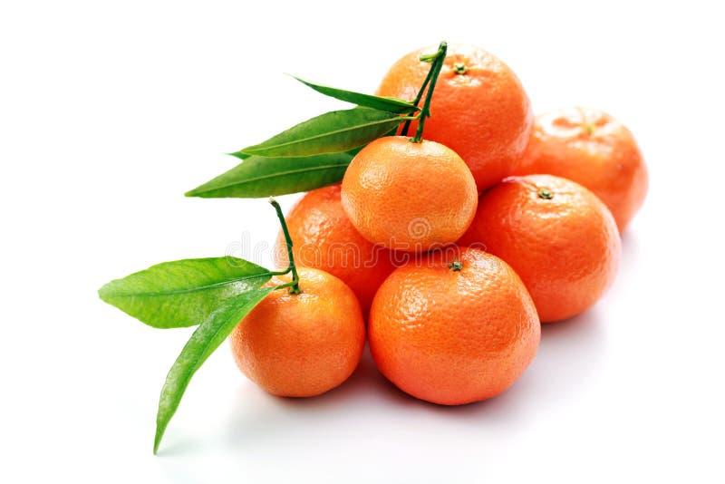 Tangerinen stockfotos