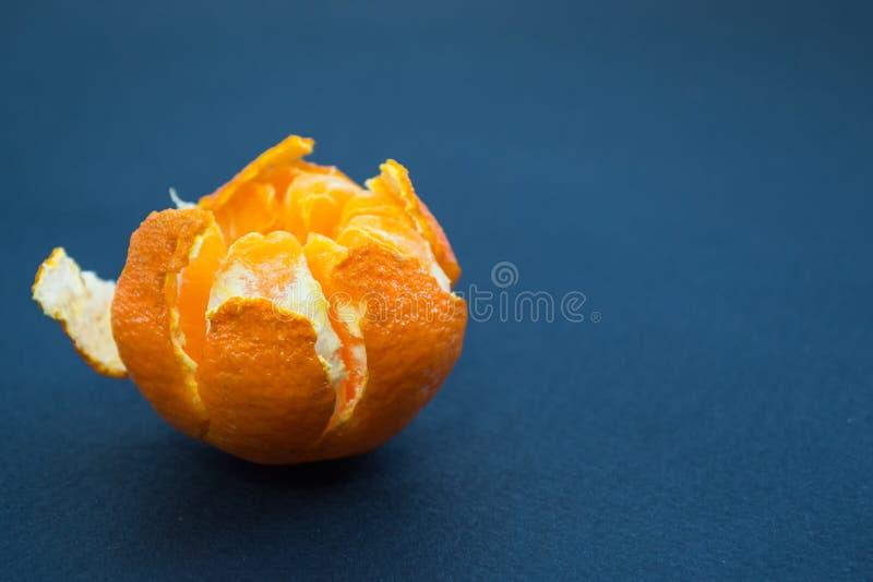 Tangerinen auf einem dunkelblauen Hintergrund mit orange Scheiben Seitenansicht, Abschluss oben Zitrusfrucht reticulata stockfotos