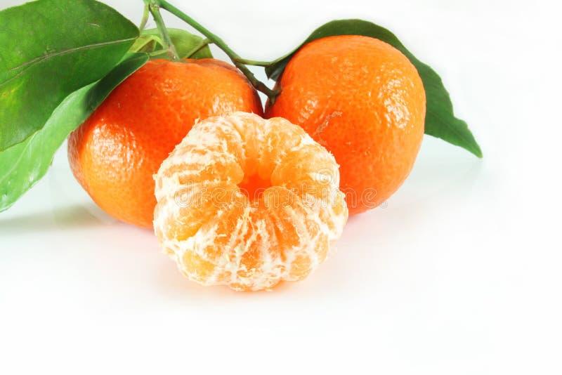 tangerines крупного плана стоковые фото