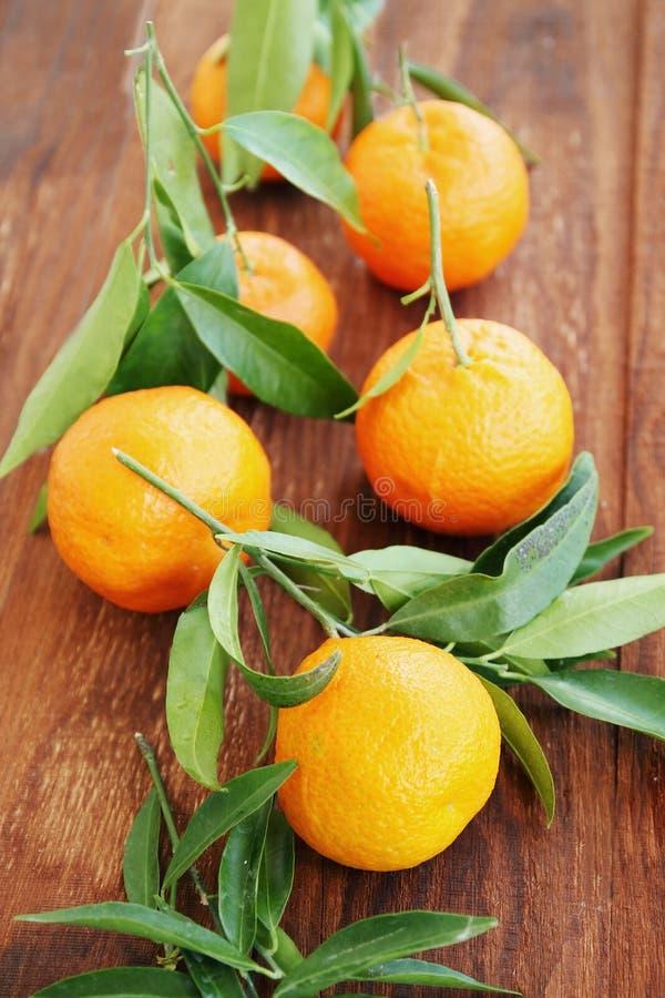 Tangerines на деревянной доске стоковое изображение