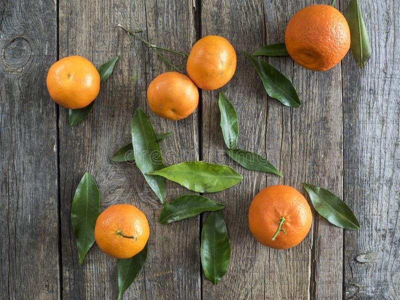 Tangerines с листьями стоковая фотография rf