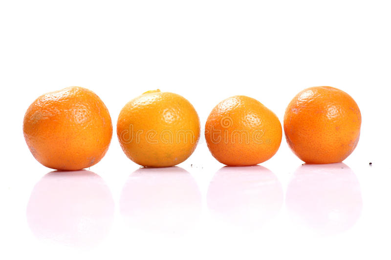 Tangerines. Four tangerines on white background stock images