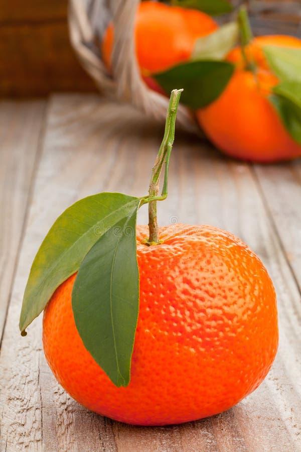Tangerines στοκ εικόνα
