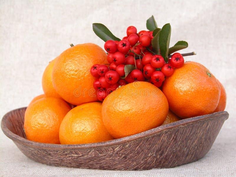 Download Tangerines στοκ εικόνες. εικόνα από χυμός, φυσικός, κλημεντίνη - 388382