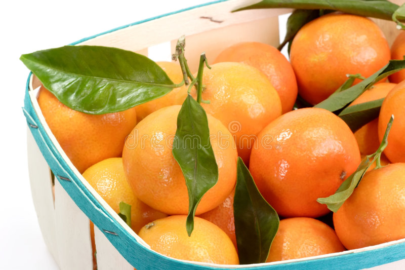 Download Tangerines stock image. Image of healthy, satsuma, food - 7191817